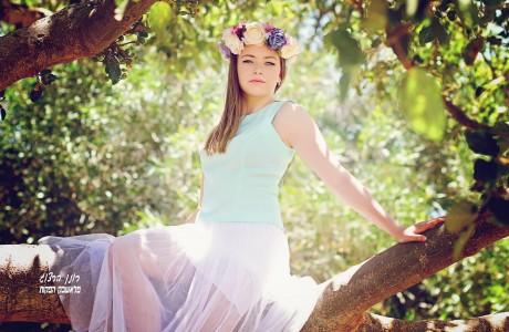 אליסה על עץ עתיק