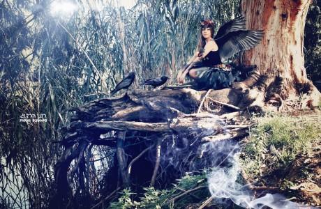 צילום בוק עם עורבים שחורים