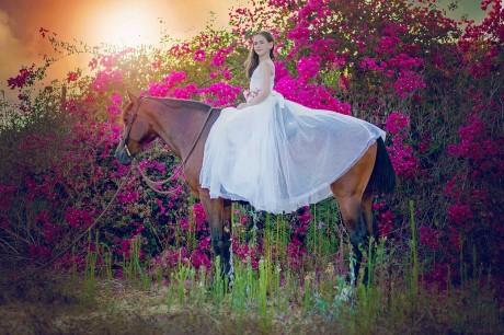 צילומי סוסים על רקע פרחים