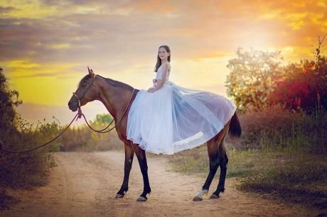 צילומי סוסים בשקיעה