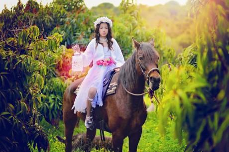 צילומי סוסים קסומים